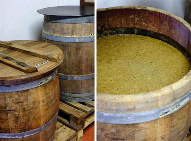 Una delle ultime sperimentazioni a L'Olmaia, a base di grano saraceno