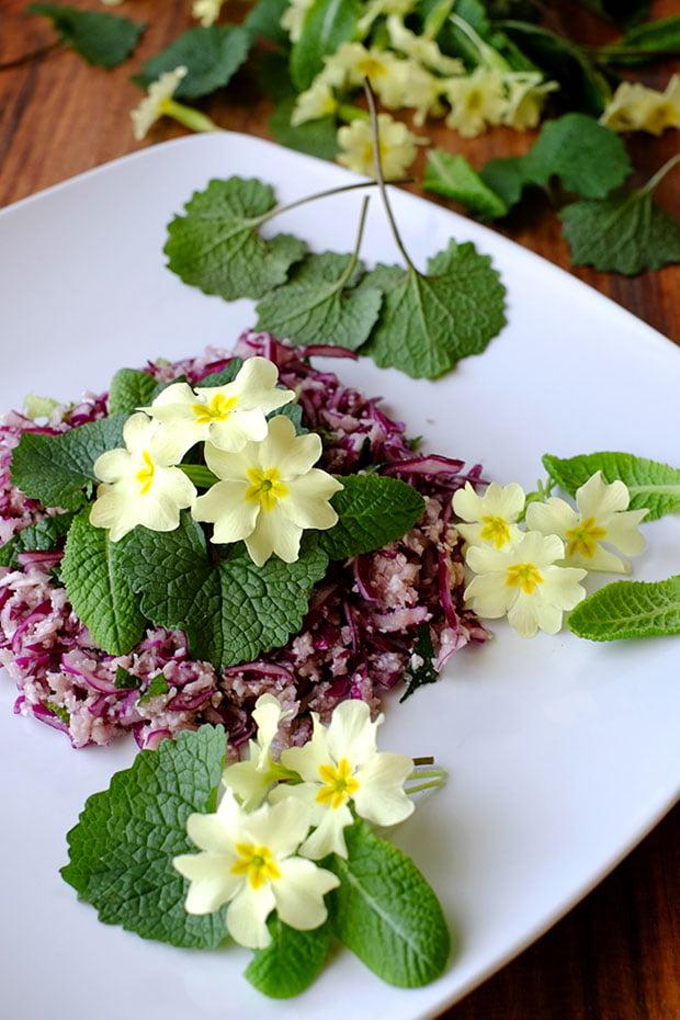 Insalata di cavoli con fiori e foglie di primula e alliaria 11