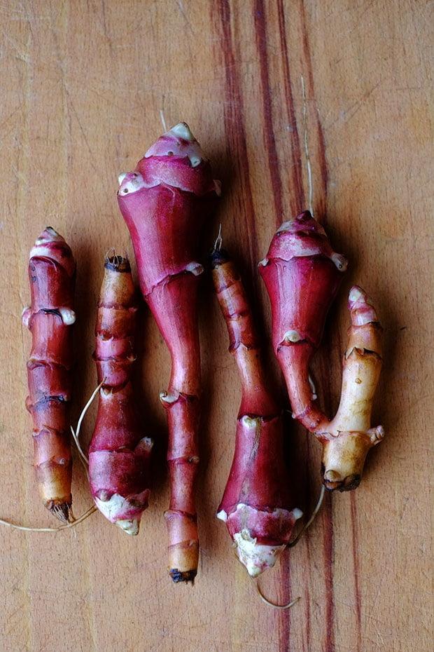Vellutata di topinambur selvatico e carote con crostini di pane al timo 3
