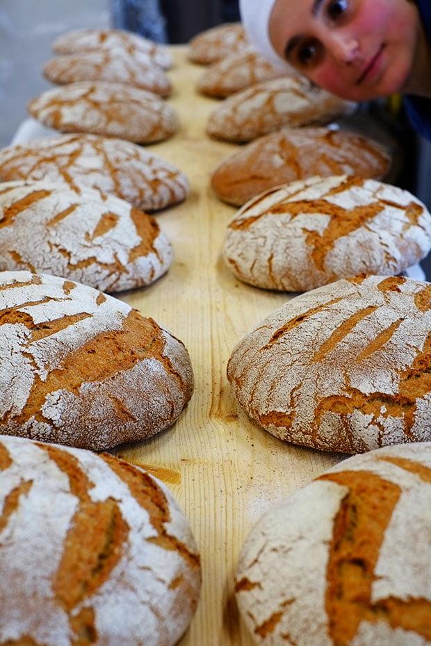Le nuove filiere locali del grano: Il pane di grani antichi del Podere Pereto 6
