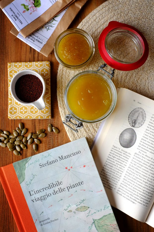 Composta (e mostarda) di zucca cedrina, e le incredibili storie dei semi 1