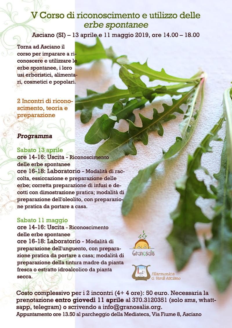 Riconoscimento e utilizzo delle erbe spontanee - Quinta edizione 7