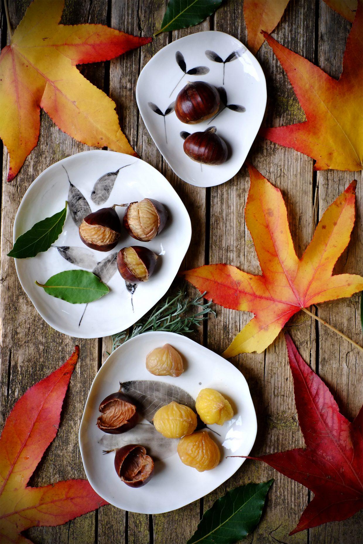 Marroni lessati con alloro, semi di finocchio e artemisia dei calanchi 10
