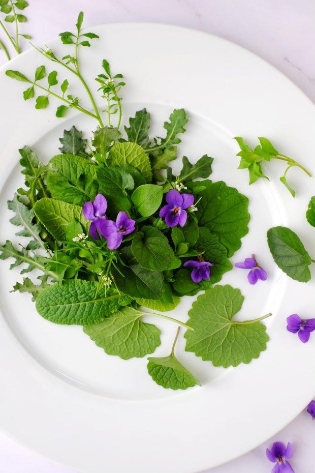 Misticanza d'inizio marzo con fiori di violetta e cardamine 2