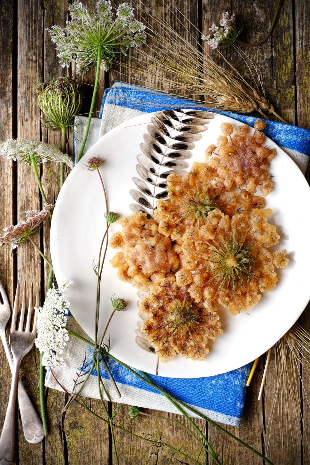 Fiori di carota selvatica fritti in pastella 1