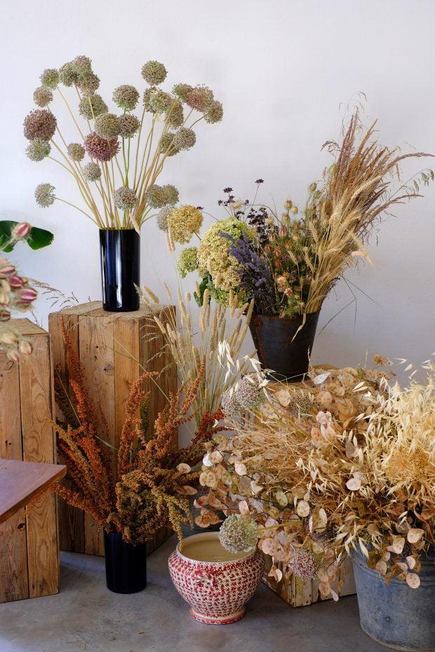 Puscina Flowers - Coltivare bellezza, senza tradire la natura 17