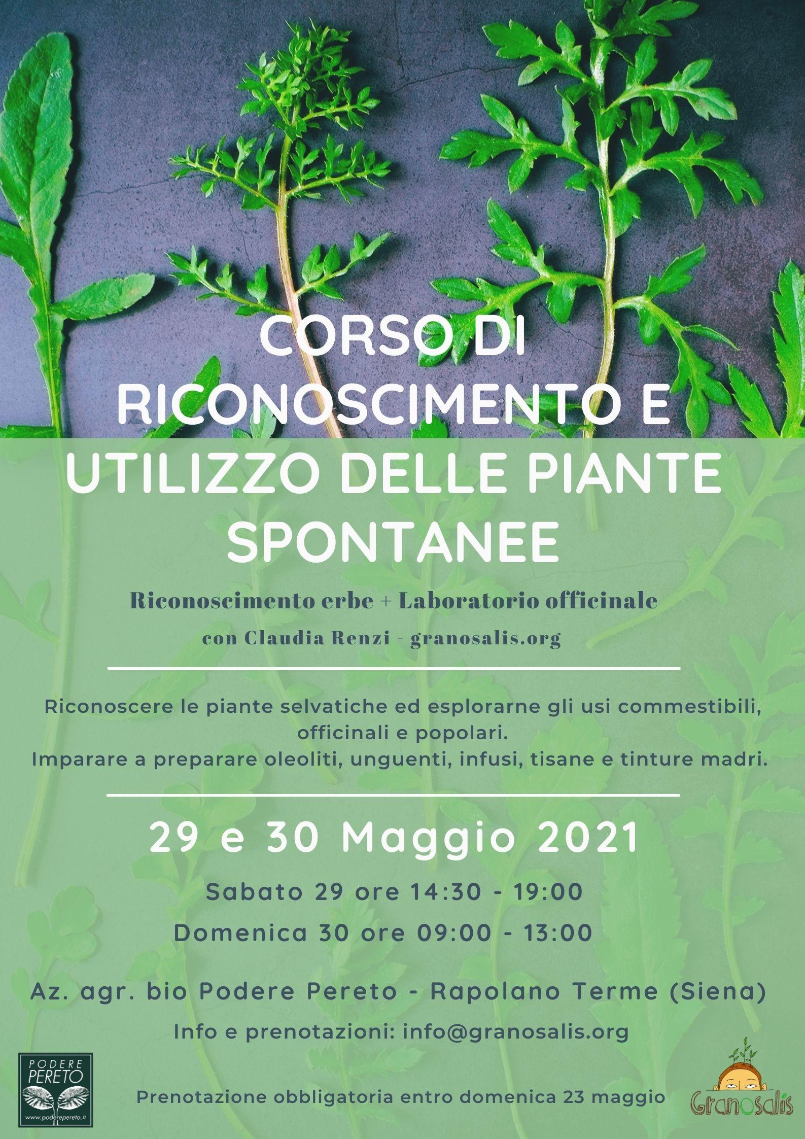 Corso di riconoscimento e utilizzo delle piante selvatiche 7