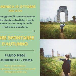 Corso di riconoscimento erbe a Roma 10