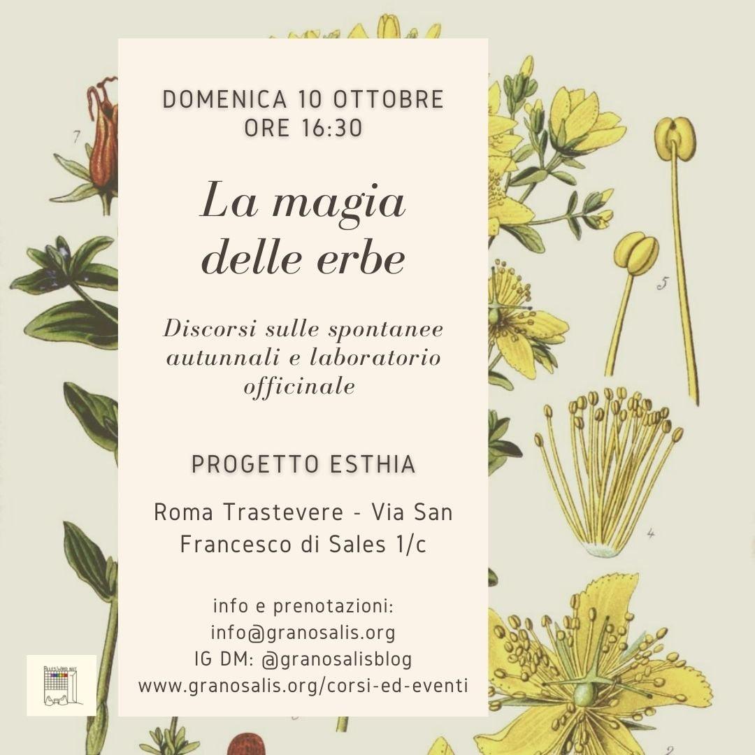 Laboratorio officinale e discorsi sulle erbe autunnali a Roma 23